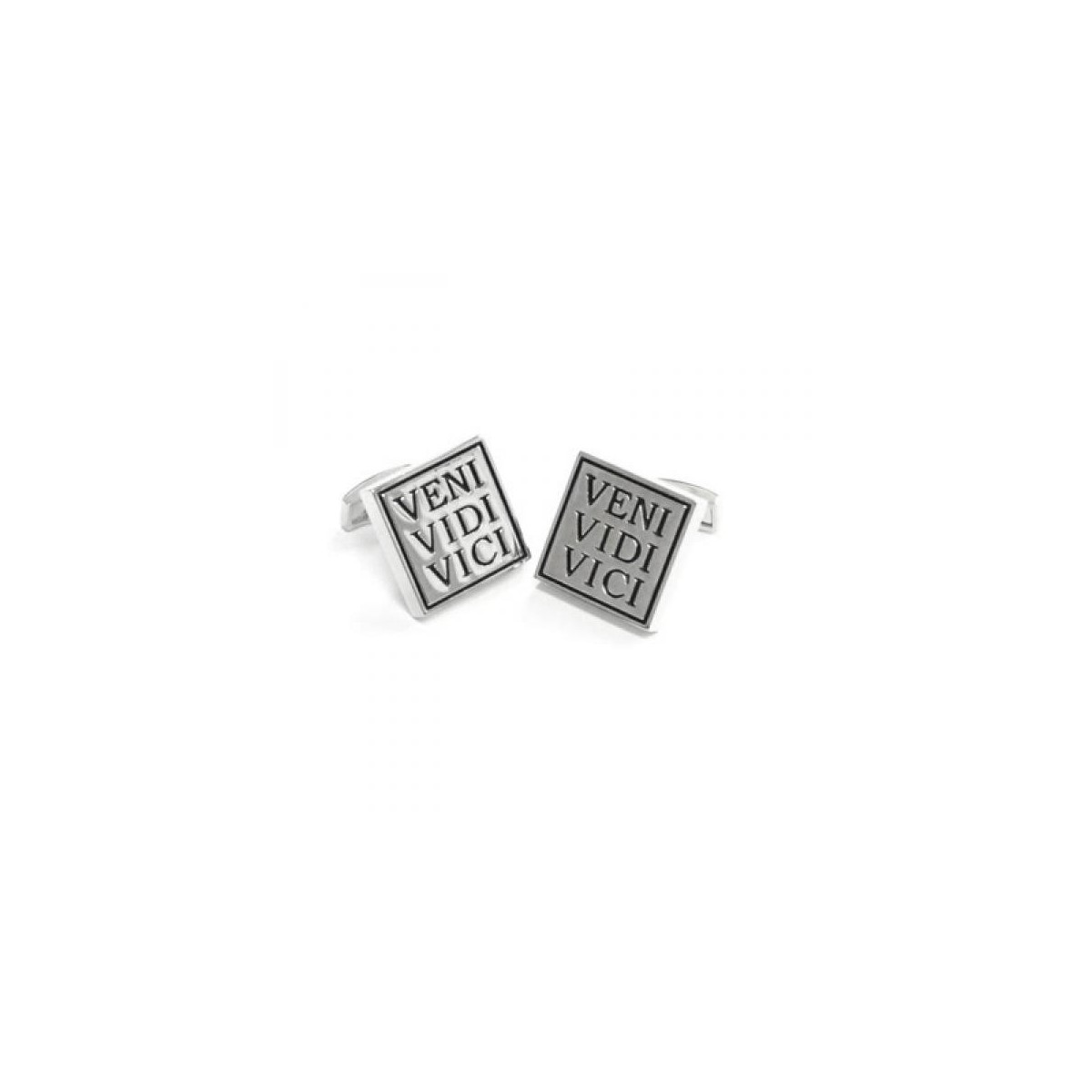 letters of recommendation samples veni vidi vici cufflinks i came i saw i conquered cufflinks 12102